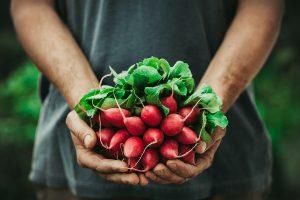 farmer with radishes